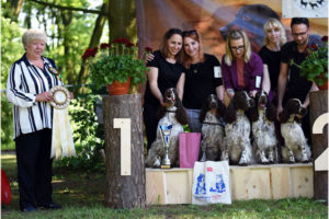 BIS at the Club Show & results from FIN
