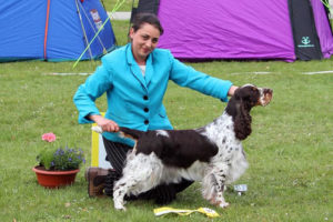 Show results and a hunting test