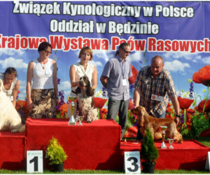 upalne wystawy w Polsce i Francji